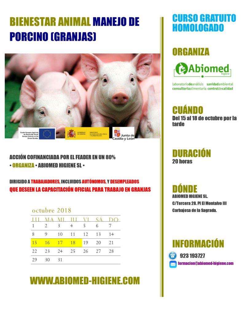 Curso gratuito de bienestar animal (manejo porcino)